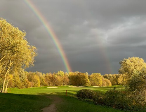 """FOTOWETTBEWERB – """"Das ganz besondere Golf&more-Foto"""""""